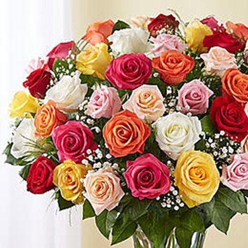 50 Large Roses Mix